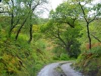 jura-road-up-north1200x806