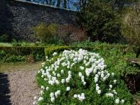 jura-house-garden-10