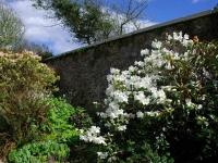 jura-house-garden-5